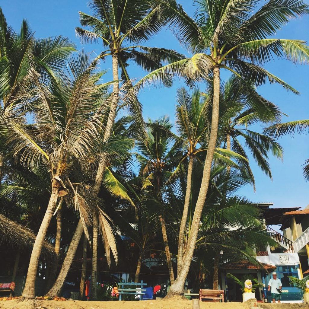 sri lanka obiective turistice, Sri Lanka obiective turistice